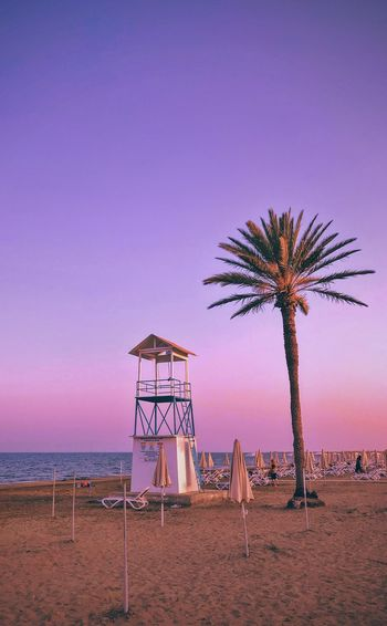 Palm trees at beach against sky during sunset