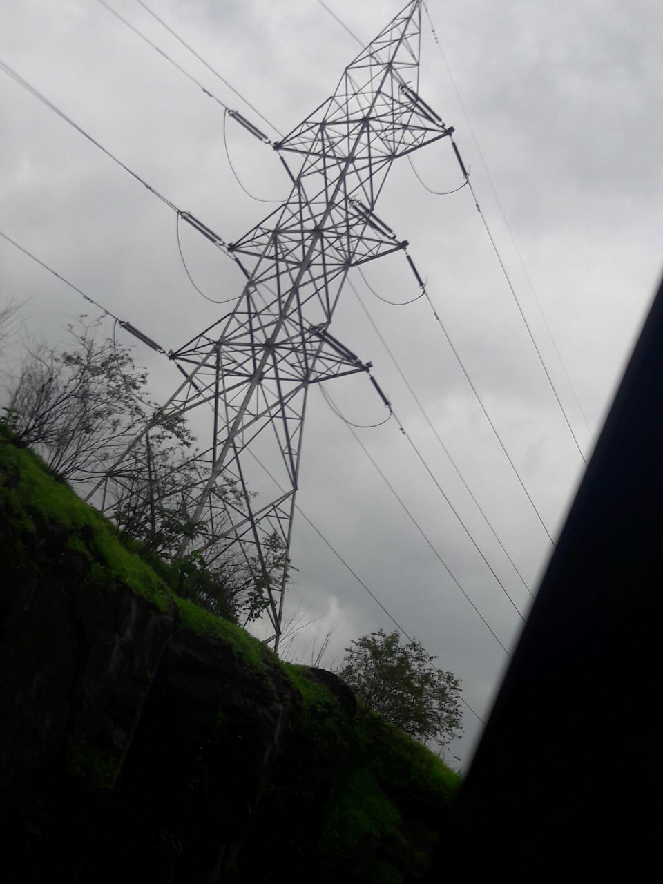 sky, low angle view, connection, no people, cable, outdoors, cloud - sky, day, nature, bare tree, tree, beauty in nature, electricity pylon