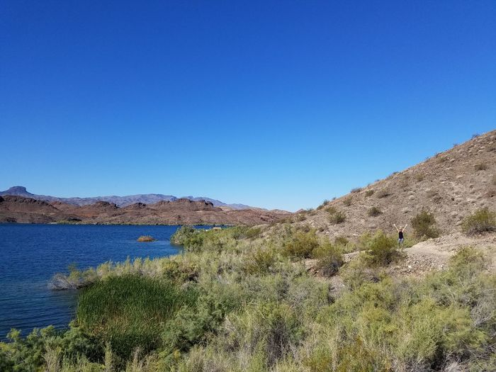 Spot The Blonde - Solitude Cove Lake Havasu, AZ Hanging Out Check This Out Taking Photos That's Not Me Enjoying Life Eyemphotography Morning Walk Straightoutofcamera Smartphone Photography Samsungs7 Available Light Straightfromphone Faces Of EyeEm