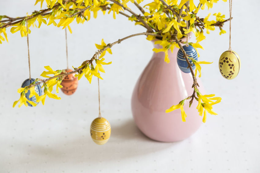 Almost 40 years old wooden easter eggs which remind me of my childhood. Bouquet Close Up Close-up Decoration Easter Decoration Easter Eggs Easter Ready Flower Forsythia Hanging High Angle View Indoors  Nature Plant Still Life Table Tradition Vase Vase White Background Wooden Yellow Yellow Flowers