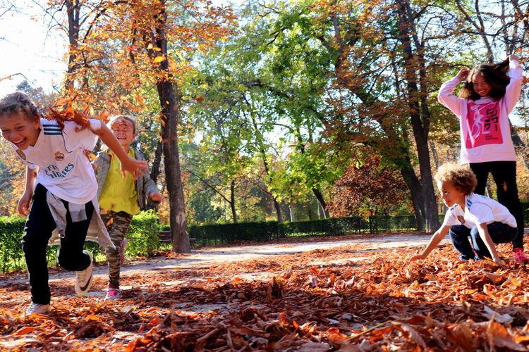 Children playing in park during autumn