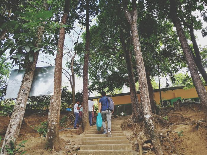 Go Up EyeEmNewHere Tree Full Length Childhood Child Togetherness Tree Trunk Standing Men Boys Sky Woods