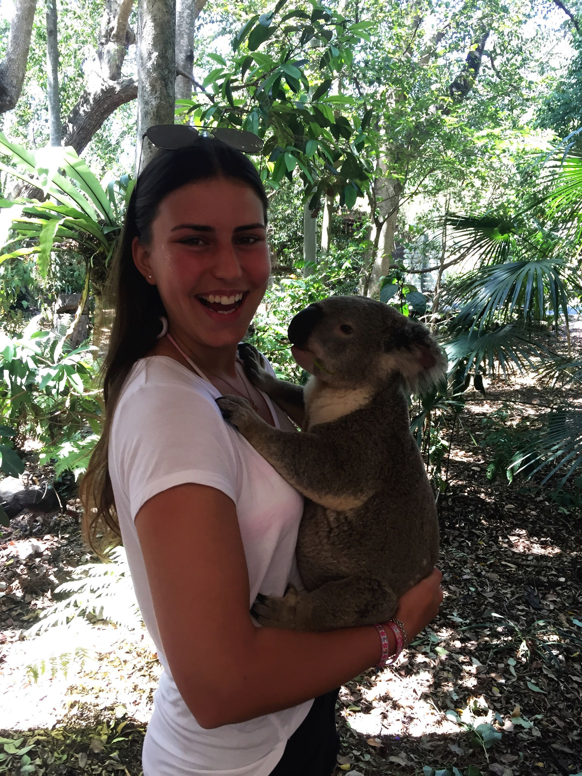 portrait, smiling, looking at camera, happiness, one animal, animal themes, tree, affectionate, embracing, love, pets, lifestyles, enjoyment, cheerful, young adult, one person, holding, friendship, sunlight, bonding, leisure activity, mammal, day, young women, care, nature, hugging, outdoors, adults only, koala, people, adult