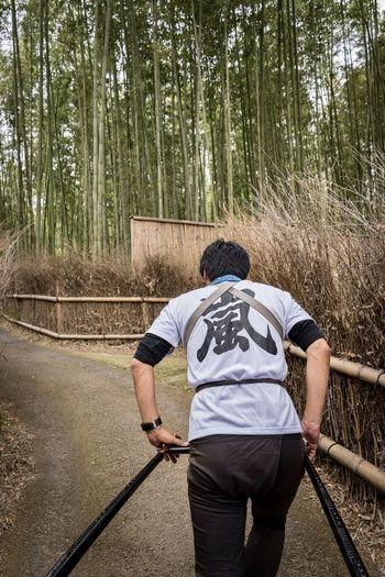 Rear view of man walking on walkway in forest