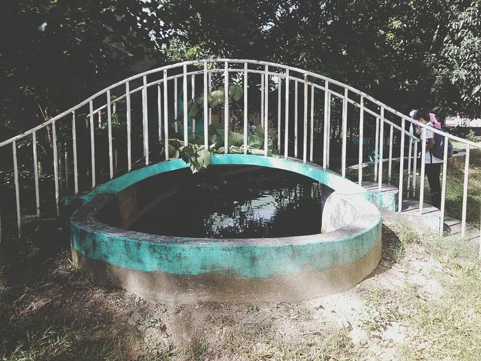 Bridge Marikina High School Fish Pond