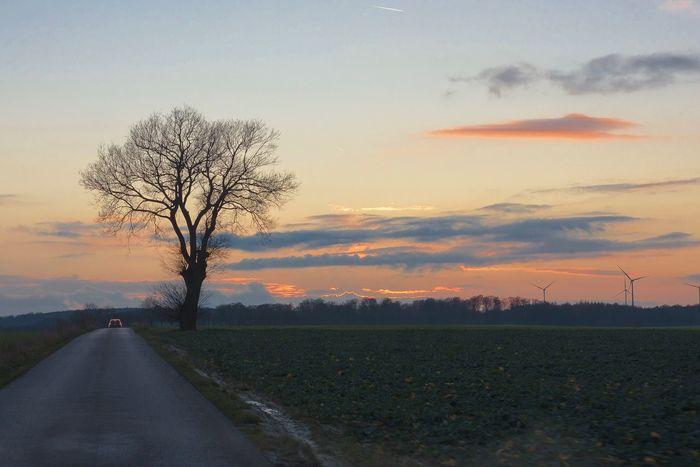 Road Landscape Sunset Nature Sky Tree Outdoors Lowlight GERMANY🇩🇪DEUTSCHERLAND@ Nikond7200 Nikkor35mm
