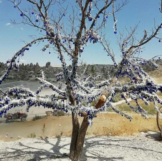 Evil Eye Evil Eye Beads Blue Tree Tree Clear Sky Mountain Sky Landscape