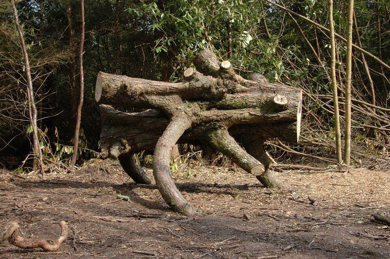 Tree Monster Tree Art