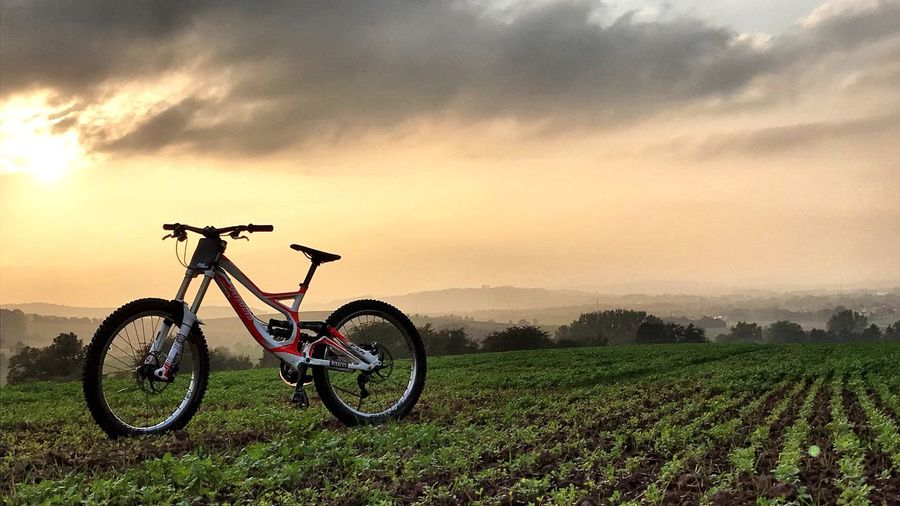 Be. Ready. Sunset Nature Bicycle