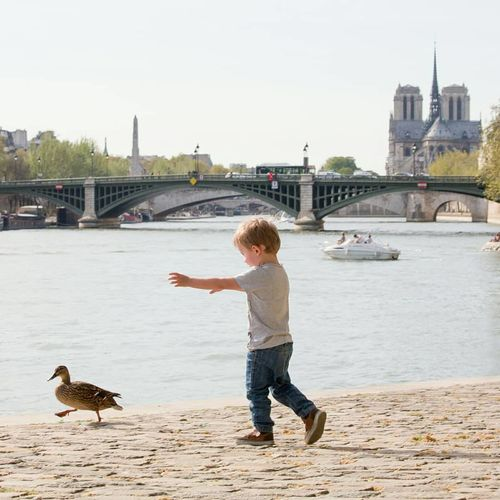 coin coin coin Bird Water Full Length Childhood Child City River Urban Skyline Sky