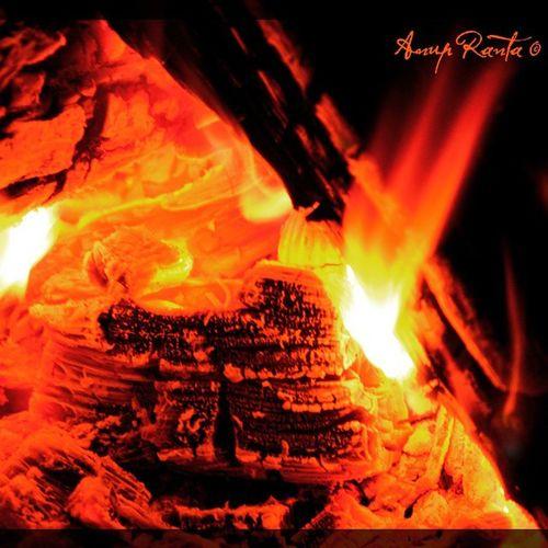 Хот ватра гори дрво брежуљка логорска ватра
