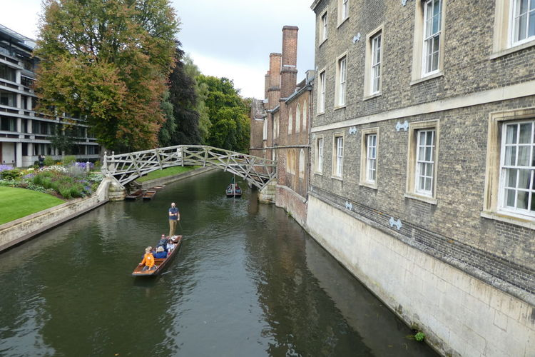 Mathematical Bridge Architecture Bridge - Man Made Structure Building Exterior Built Structure Canal Day Leisure Activity Lifestyles Men Mode Of Transport Nature Nautical Vessel Oar Outdoors People Punt Boating Real People Rowing Sky Transportation Tree Water Waterfront