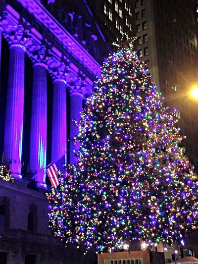 Taking Photos Chistmas Lights NY City Christmas Tree Tranquil Scene Best Christmas Lights Check This Out
