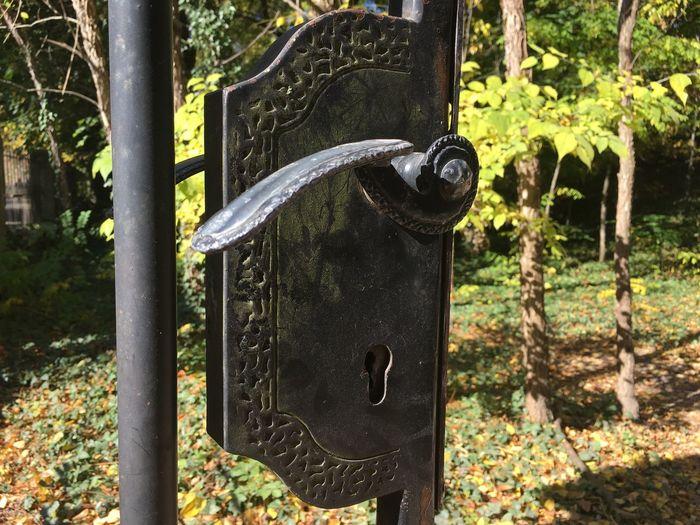 Close-up Door Handle Iron Door Handle Latch Metal No People Outdoors Tree