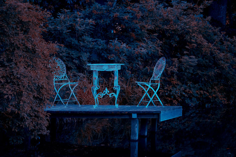Architecture Bench Blue Built Structure Dusk Forest Growth Illuminated Land Nature Night No People Outdoors Park Park - Man Made Space Plant Seat Tranquility Tree Wood - Material