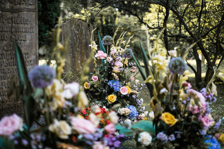 Goth Gothic Graves Gravestones It's Never Too Late For Flowers Old Graves Fresh Flowers Pale Romantic Zombies