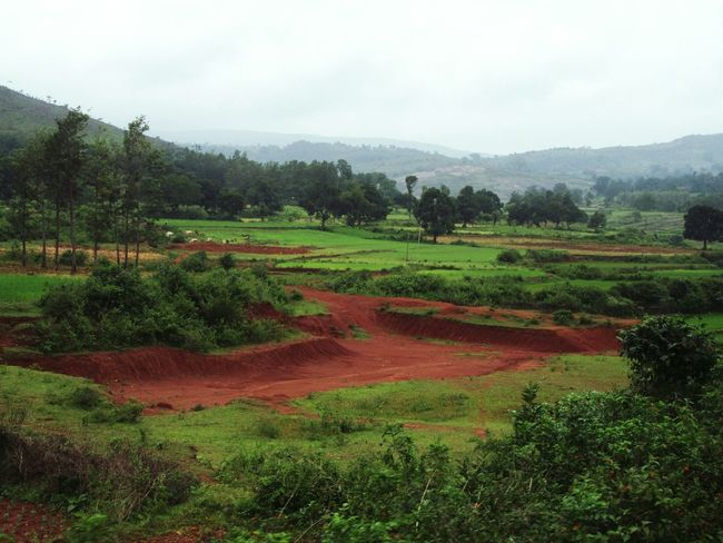 Landscape Field Agriculture Nature Mountain Sky EyeEm Nature EyeEm Nature Lover Travel Photography From My Point Of View EyeEm Travel Photography High Angle View On The Way Eastern Ghats Mountain Range Eyeem Travel Explore India My Photo Commute The Color Of School Eyeem Paid