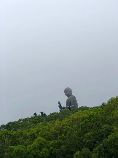 Big Budha Real People Green Color Plant Growth Leisure Activity Beauty In Nature Lifestyles