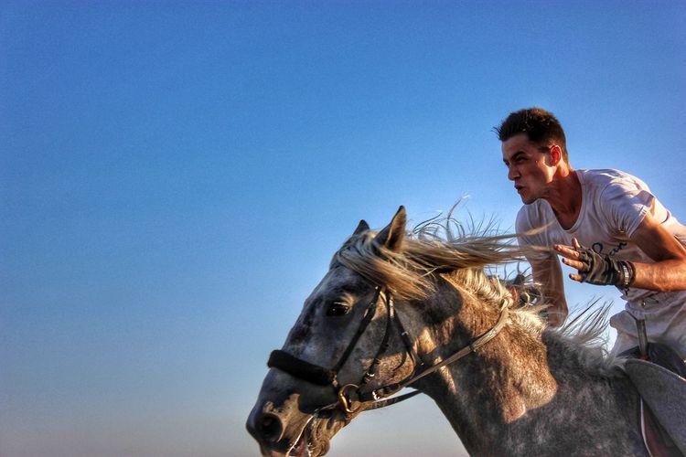 Man riding horse against sky