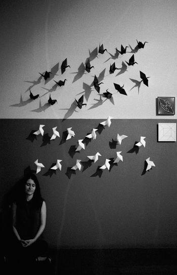 Analogue Photography Blackandwhite Film Indoor Monochrome Origami Paperbirds