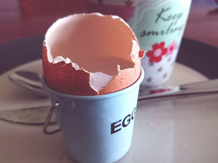 Good Morning Breakfast Eggshell Trash Bio Afval Bio-trash Bio-müll Starting The Day