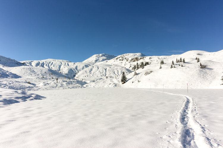 Winter hiking in arosa, switzerland
