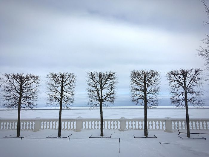Five. Baltic sea. Russia Covered In Snow Blue Sky Sankt-Petersburg Saint Petersburg Saint-Petersburg Russia 彼得霍夫宮 Petergof Baltic Sea Peterhof Idyllic Lines And Shapes Promenade Five Sky Tranquility Nature Cloud - Sky Beauty In Nature Tranquil Scene Scenics - Nature Outdoors Environment