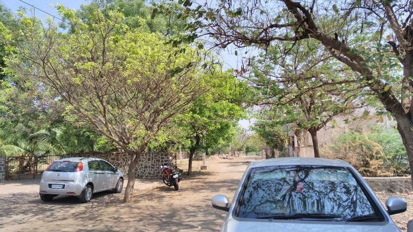 Nature.... Need For Speed Nature_collection Green Trees Road Cars Bike Electric Pole Sony Xperia M5 Compound Adventure Club Been There.