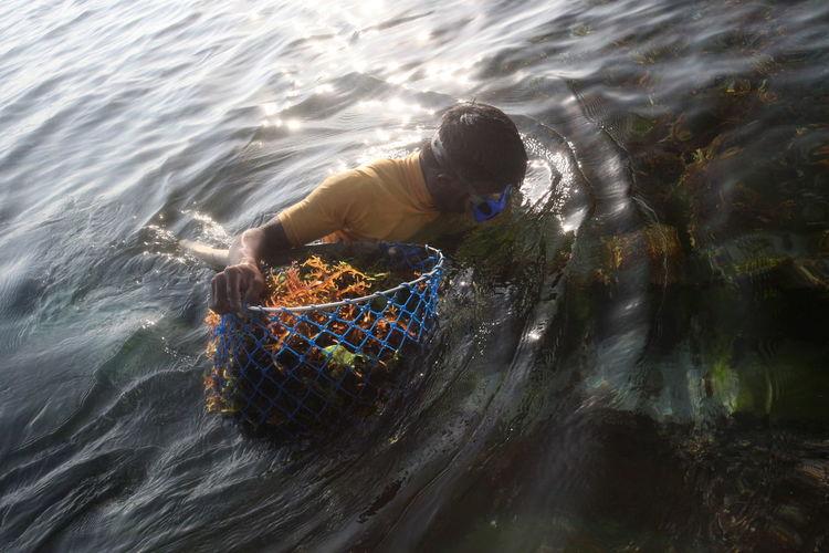 High angle view of man holding seaweed on sea
