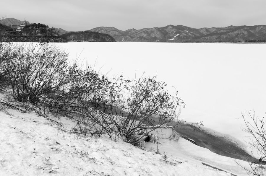black and white image of snow-covered lake, Uiamho Lake in Chuncheon, Gangwondo, South Korea Black & White ChunCheon Cold Lake Cold Weather Gongjicheon Snow Land Uiamho Lake Winter Winter Landscape Beauty In Nature Black And White Blackandwhite Bw Cold Cold Temperature Day Lake Landscape Mountain Nature No People Outdoors Scenics Sky Snow Snow-covered Snow-covered Lake Tranquil Scene Tranquility Water Winter Winter Lake Winter Land Winter Time