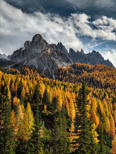 Dolomiti Autumn