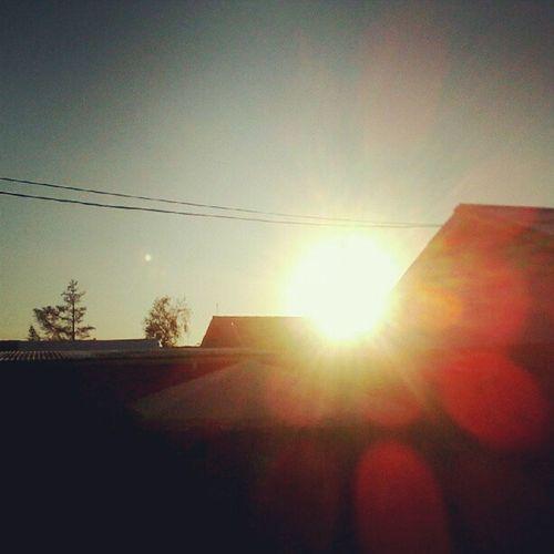 Whpgoldenhour Sunset Sun Sol atardecer. mi patio