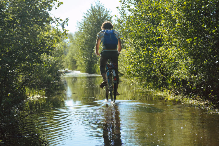 Rear view of man riding bicycle on water amidst plants