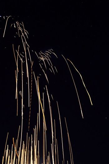 Night Sky Motion Low Angle View Celebration Long Exposure Firework Display Outdoors No People Exploding Firework - Man Made Object Illuminated Event Star - Space Diwali💟🎇🎆🌌 Diwali Night.... :-* Diwali2016 Diwalicelebrations Diwali Annual Event Diwali Lights Firework🎆