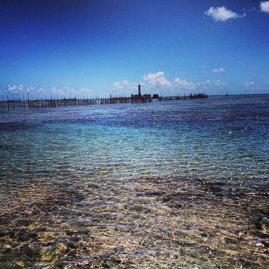Farol da ponta verde, azul... Maceió Verao2014