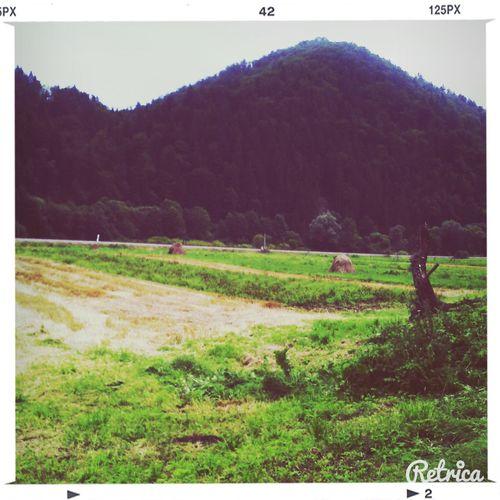 Nature Summer Holiday :) Photo♡