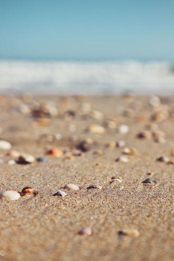 Surface level of sand on beach against sky