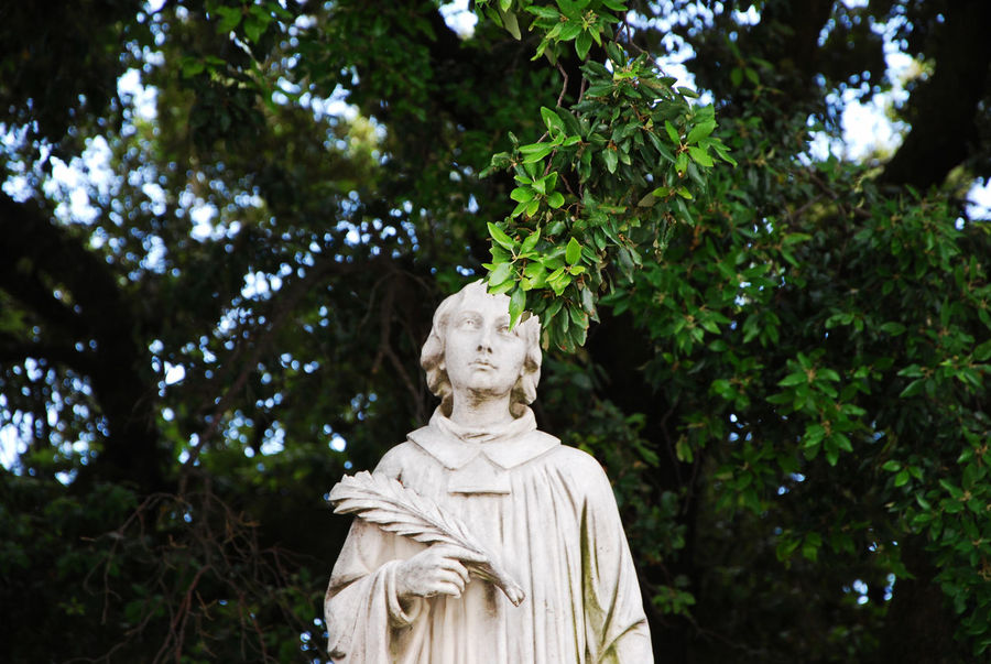 Leaves and a white statue outside the church of Castagnola - Framura, La Spezia, Italy. Church Italia La Spezia Travel Art And Craft Castagnola Day Europe Framura Human Representation Italian Italy Male Likeness Nature Old Outdoors Religion Sculpture Statue Tourism Tree