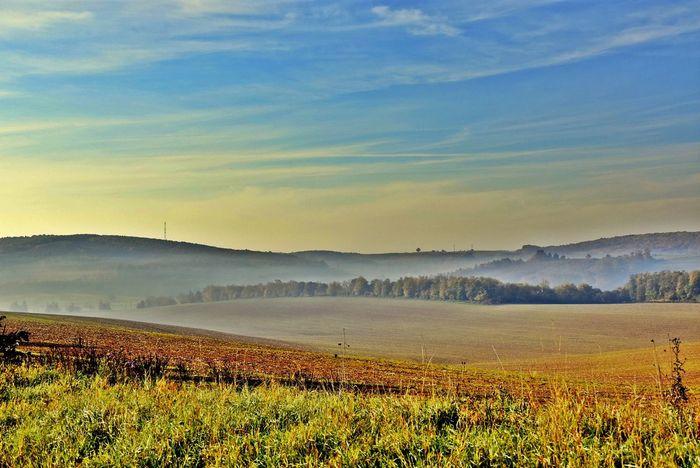 #autumn #hungary #sunset #sun #clouds #skylovers #sky #nature #beautifulinnature #naturalbeauty #photography #landscape #világörögség #zselic #ősz Day Landscape Nature Sky Yellow