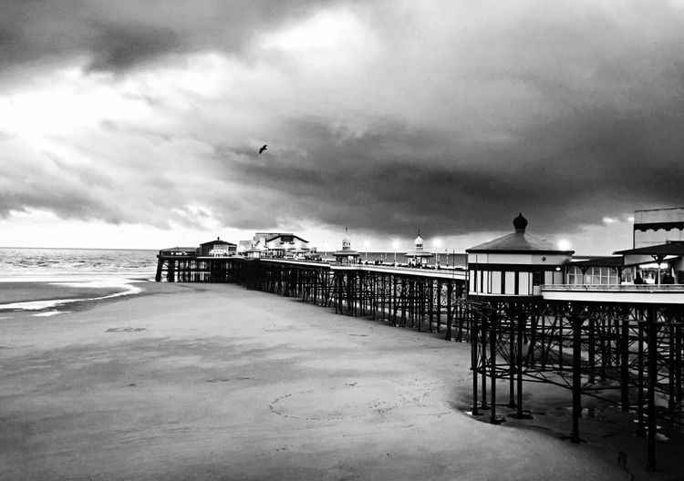 A moment in time Blackpool North Pier Blackpool Blackpool Seafront Cloud - Sky Sky Sea Vertebrate Bird Water Beach Architecture Built Structure Flying Nature Outdoors Day Land Pier