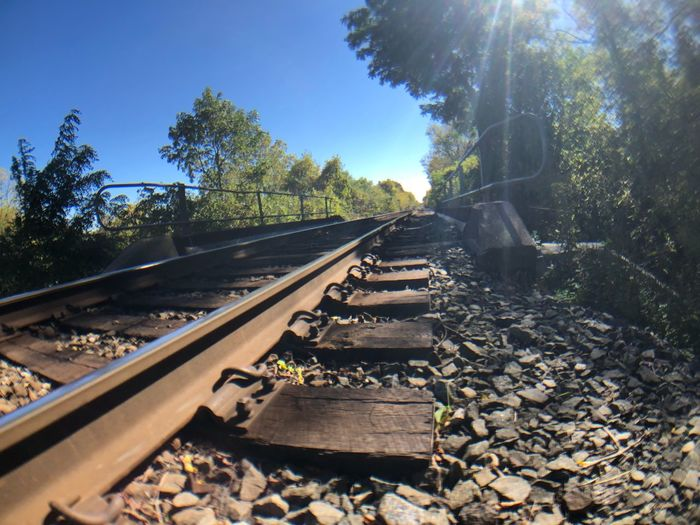 Tree Rail Transportation Track Railroad Track Plant Transportation Nature The Way Forward Sunlight Diminishing Perspective Direction Solid Growth Clear Sky Rock - Object Day Sky Rock No People Sunbeam