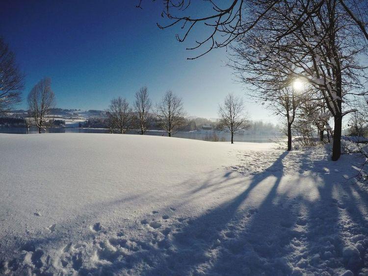 Wintertime Gopro Gopro Shots Winter Beat-fighter Snow Allgäu Landscape Photography Deutschland