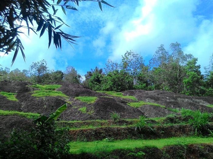 Amazingindonesia Dusun Muntuk,Yogyakarta