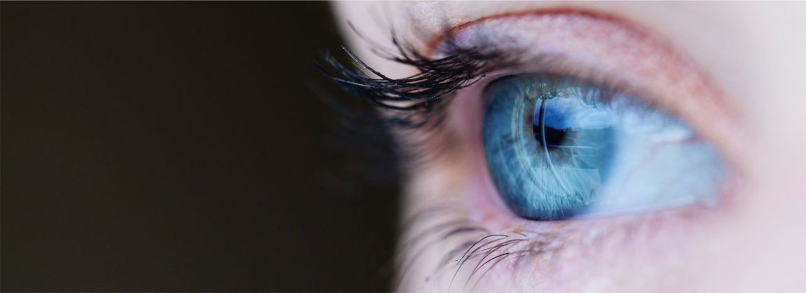 Sight. Eyesight Real People Iris - Eye Sensory Perception Vision Portrait
