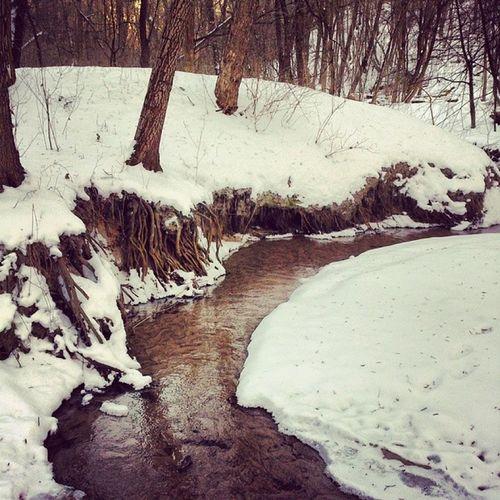 Сырые закоулки Сырца сырец Ручей дневник_наблюдателя Syrets winter creek