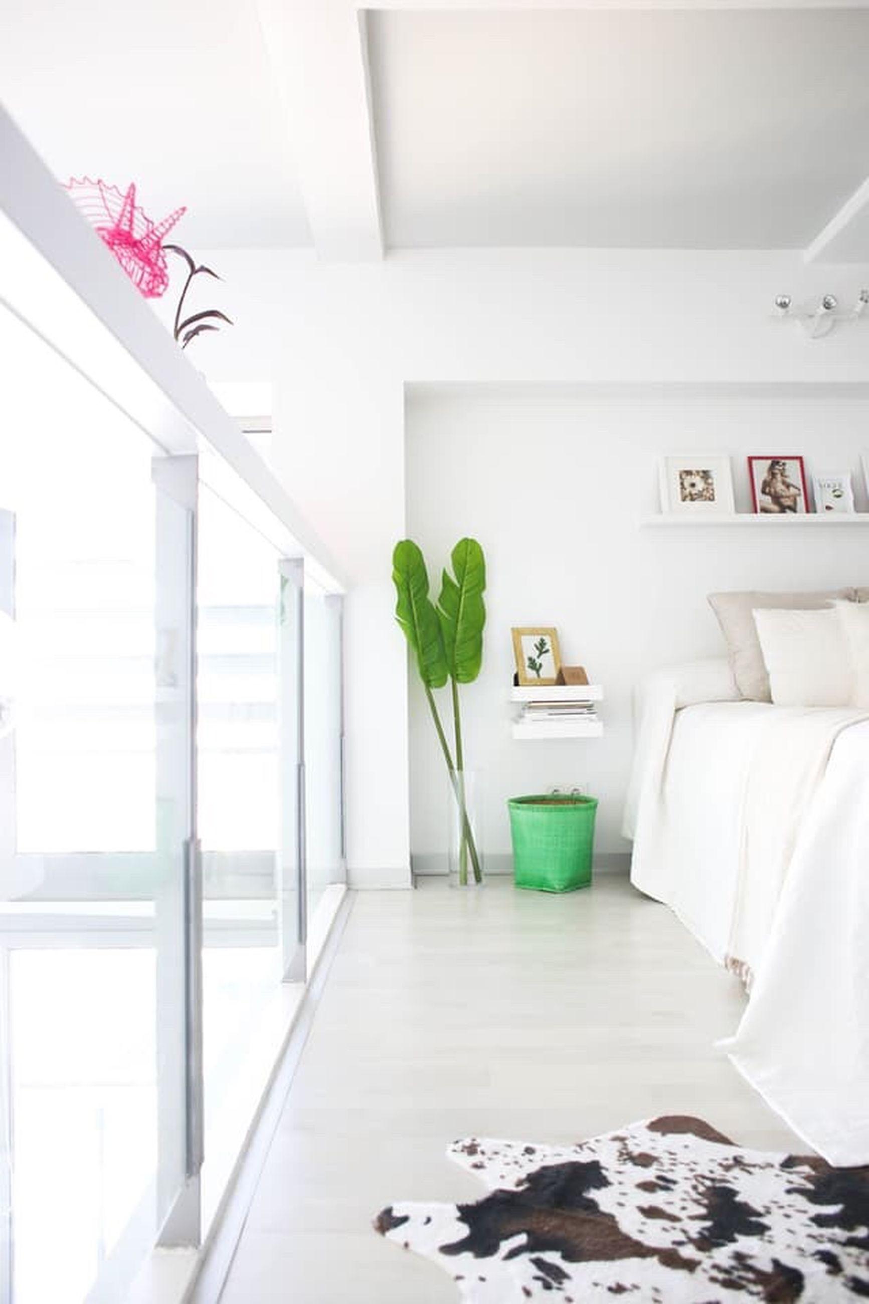 indoors, potted plant, flooring, houseplant, flower, growth, freshness, house plant, modern, flower arrangement, arrangement, indoor