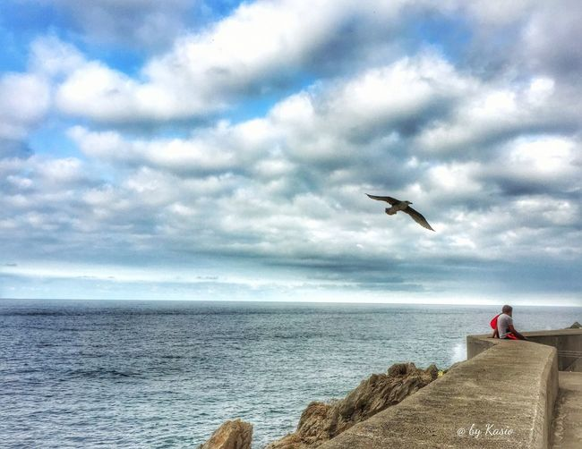Sea Bird Flying Sky Water Cloud - Sky Animals In The Wild Beauty In Nature Horizon Over Water Outdoors Landscape_Collection EyeEm Best Shots Capture The Moment Skyporn Water_collection Sky_collection The Great Outdoors - 2016 EyeEm Awards Wather Collection Tranquil Scene