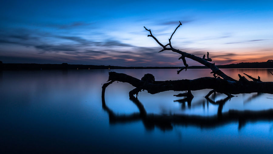 Silhouette Of Driftwood In Lake Against Sky