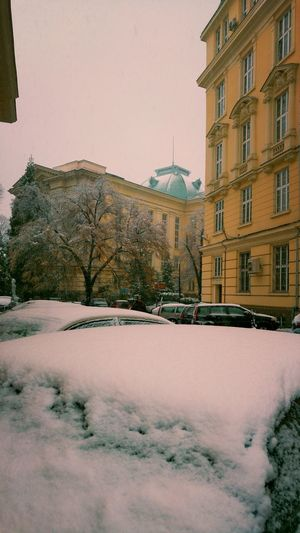 Winter Snow Architecture Built Structure Building Exterior Cold Temperature Outdoors Day Snowing City Nature University Building Lifestyles Close-up Colors Colour Of Life Winter Snow ❄ Snowing Snow Day Sofia University City Winter Architecture Cars Multi Colored