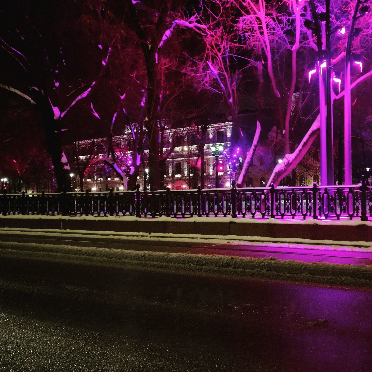 night, illuminated, architecture, building exterior, built structure, city, lighting equipment, plant, no people, nature, tree, outdoors, grass, light - natural phenomenon, arts culture and entertainment, park, building, multi colored, city life, nightlife, stage, purple